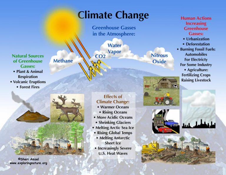 short essay on climate change and global warming Professional help on global warming essay you have an essay on global warming and climate change we will easily write long and short essays on global warming.